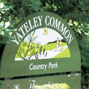 Yateley Common near Blackbushe Park, Yateley, Hampshire