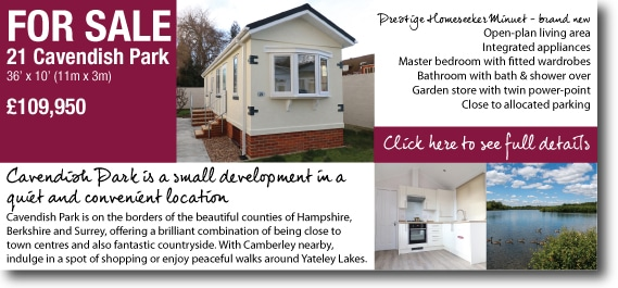Park home for sale near camberley